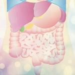 内臓便秘治療