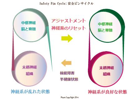 カイロプラクティック 安全ピンサイクル