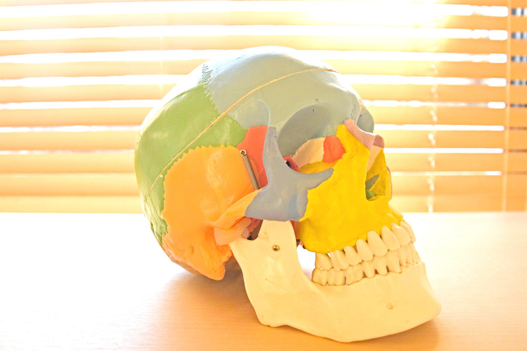 頭蓋矯正は様々な効果を生み出します
